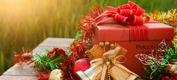 What to buy a gardener this Christmas