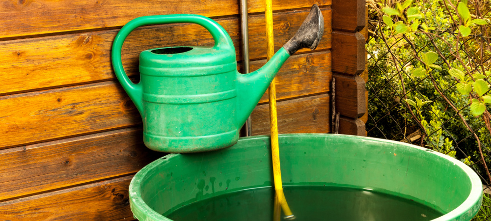 How to water your garden using as little