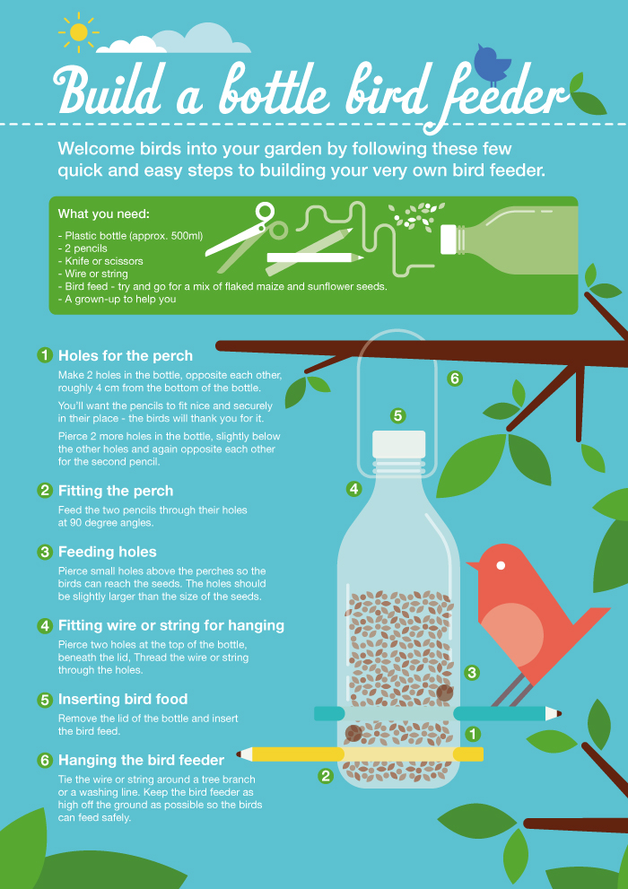 Bird feeder guide | Papillon garden design