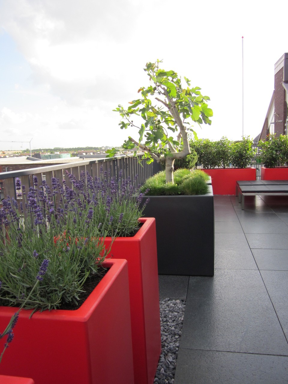 Colourful planters