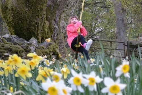 Spring garden blog