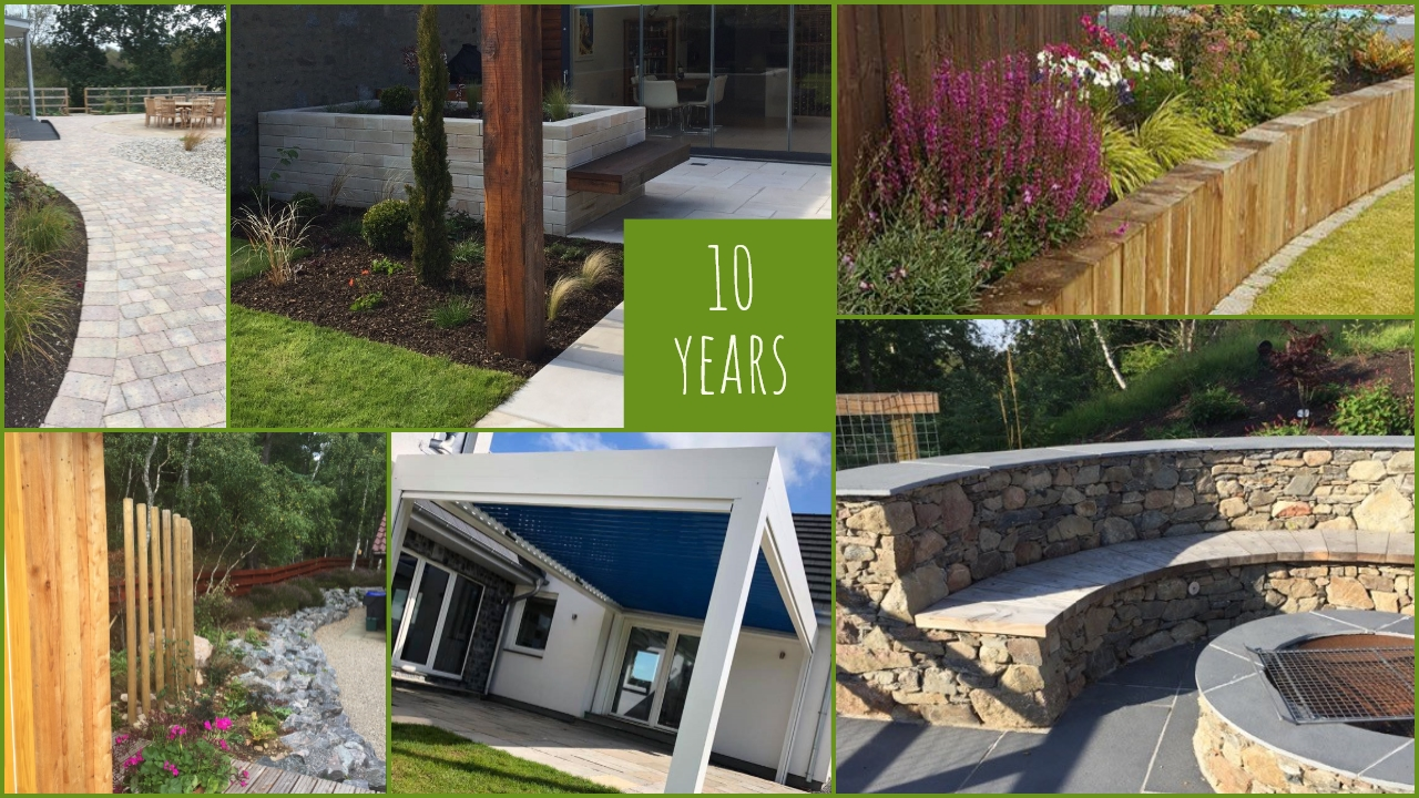 Papillon celebrates 10 strong years